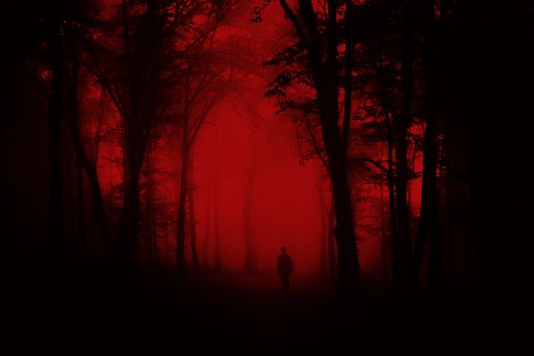 Toter Wald Horror Blut Rot Poster P3006